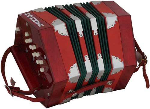 Hohner D40 20 Key Anglo Concertina Image