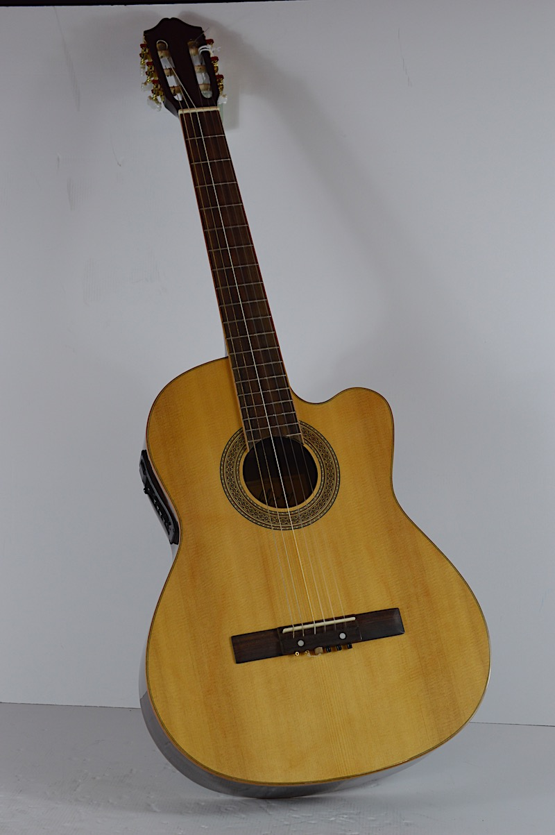 GUITAR ASHBURY MODEL GR3018 Image